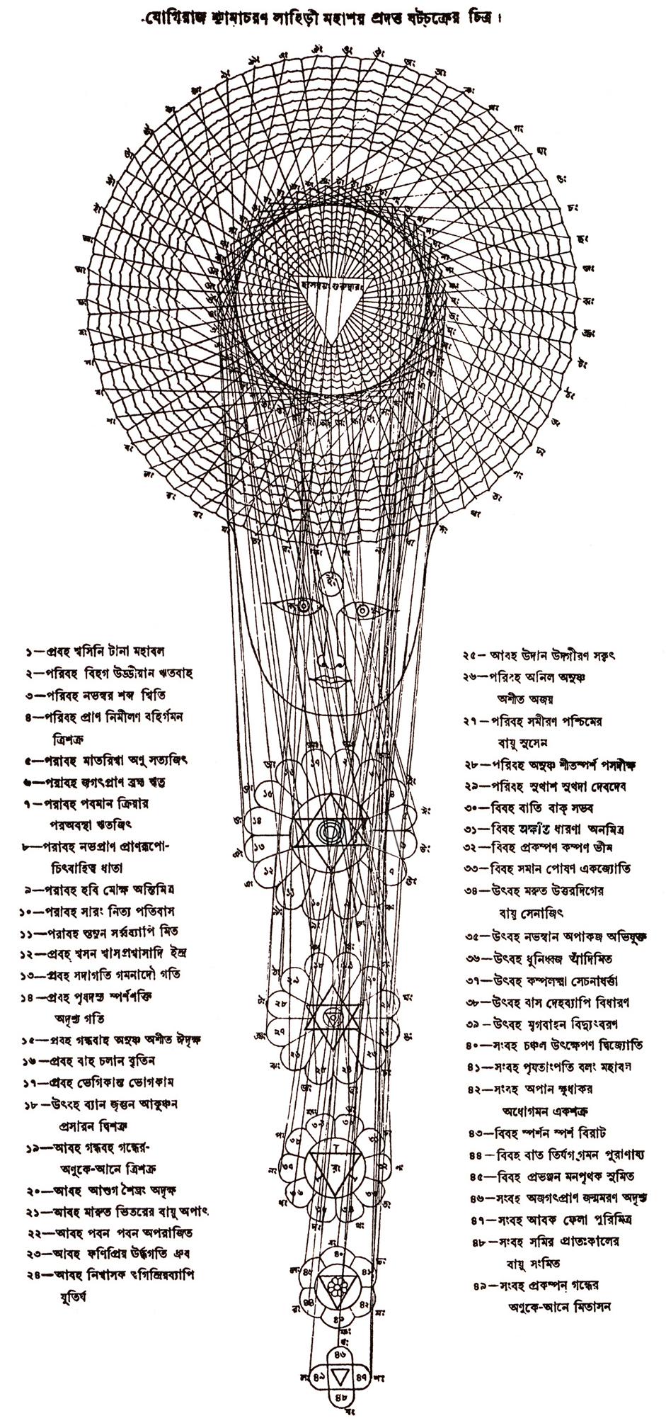Kriya Union